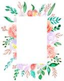 Akwarela bukieta kolorowy kwiat Kwiecisty botaniczny kwiat Ramowy rabatowy ornamentu kwadrat Aquarelle wildflower dla tła, ilustracja wektor