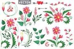 Akwarela czerwoni kwiaty, branshes, kwieciści elementy Zdjęcie Royalty Free