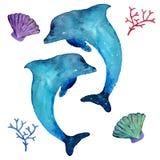Akwarela delfiny i denni mieszkanowie odizolowywający na białym tle, ilustracja wektor