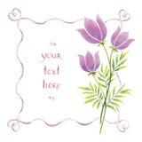 Akwarela faborki i kwiaty Zdjęcia Royalty Free