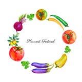 Akwarela jarzynowy pomidor, oliwki, buraki, chili pieprz, oberżyna, pietruszki ręka rysująca ilustracja odizolowywająca na bielu ilustracja wektor