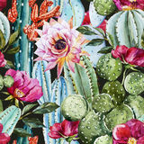 Akwarela kaktusa wzór ilustracji
