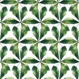 Akwarela kasztanu liść ilustracji