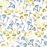 Akwarela koronowego koperkowego kwiatu bezszwowy wzór Fotografia Royalty Free