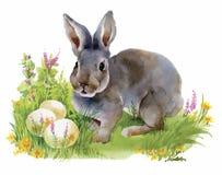 Akwarela króliki w zielonej trawy wektoru ilustraci Zdjęcie Royalty Free
