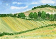 Akwarela krajobraz z wzgórzami, lasem i polem w zielonych brzmieniach, ilustracji