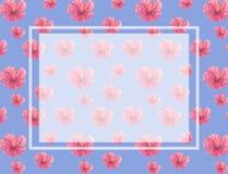 Akwarela kwiatów różowy wzór kwitnie tło Ślubna karta, świętowanie, zaprasza karcianego projekta błękita tło ilustracji
