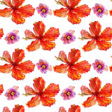 Akwarela kwiatów wzór Obrazy Stock