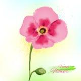 Akwarela kwiat Zdjęcia Stock
