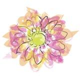 Akwarela kwiat, wektorowy format Obrazy Stock