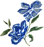 Akwarela kwiatu projekt Obraz Royalty Free