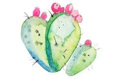 Akwarela kwiatu ręka rysujący spiky kaktusowy kwiat ilustracja wektor