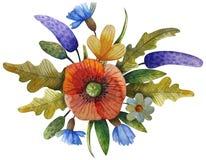 Akwarela kwiatu skład zdjęcia stock