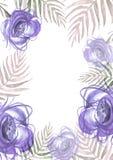 Akwarela kwiaty, wzrastali, peonia, maczek Abstrakcjonistyczny tło, farby pluśnięcie Modna ilustracja, kwiecisty projekt Kwiecist ilustracja wektor