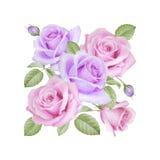 Akwarela kwiecisty bukiet róże Zdjęcia Stock
