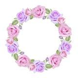 Akwarela kwiecisty wianek róże Obraz Royalty Free