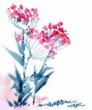 Akwarela kwitnie ilustrację ilustracji