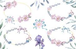Akwarela liści i kwiatów wianek Ustawia Złociste ramy ilustracyjne Okrąża oliwki i kłania się klamerki sztuki gałąź dla świętowan obraz stock