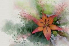 Akwarela malująca piękna pomarańczowa leluja fotografia stock