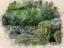Akwarela malująca piękna rzeka w lesie obrazy royalty free