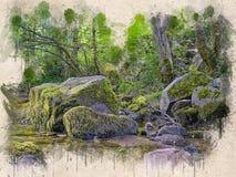 Akwarela malująca piękna rzeka w lesie fotografia stock