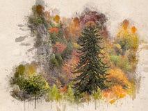 Akwarela malujący piękny jesień las fotografia stock