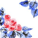 Akwarela malujący róża bukiet Zdjęcie Royalty Free