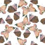 Akwarela motyli bezszwowy wzór Zdjęcie Stock