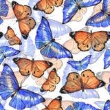Akwarela motyli wzór Fotografia Royalty Free