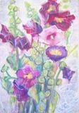 Akwarela obraz fiołkowi ślazów kwiaty Życie Obraz Stock