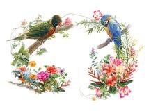 Akwarela obraz z ptakiem i kwiatami, na białym tle ilustracja wektor