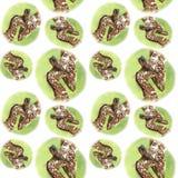 Akwarela obrazka bezszwowi deseniowi zwierzęcy ssaki żyje w Afryka żyrafach, matka, dziecko, żeńska żyrafa i lisiątko, portret o royalty ilustracja