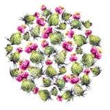 Akwarela osetu kwiaty Zdjęcia Stock