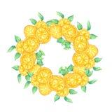Akwarela plasterek pomara?czowa owoc i ziele? opuszcza wianek ilustracji