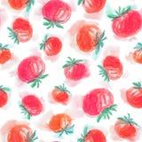 Akwarela pomidory bezszwowy wzoru Fotografia Royalty Free