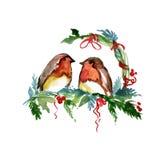 Akwarela ptak ilustracji