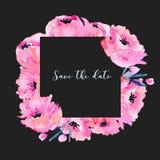 Akwarela różowi maczki obramiają, ręka rysująca na ciemnym tle, zaproszenie, save daktylową kartę Zdjęcia Stock