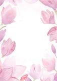 Akwarela ręka rysujący obraz magnolii rama Fotografia Royalty Free