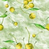 Akwarela, rocznik, bezszwowy wzór - śliwki gałąź, czereśniowa jagoda, liść Sprig śliwki z liśćmi royalty ilustracja