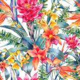Akwarela rocznika kwiecisty tropikalny bezszwowy wzór royalty ilustracja