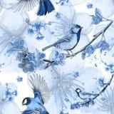 Akwarela rysuje bezszwowego wzór na temacie wiosna, upał, ilustracja ptak oddział wojskowy kształtujący wielcy tits Obrazy Royalty Free