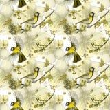 Akwarela rysuje bezszwowego wzór na temacie wiosna, upał, ilustracja ptak oddział wojskowy kształtujący wielcy tits Obrazy Stock