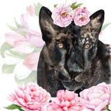 Akwarela rysunek zwierzę - pantera w kwiatach royalty ilustracja