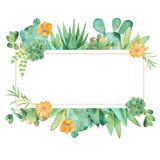 Akwarela sztandar z sukulentami, kaktusami i kwiatami, ilustracja wektor
