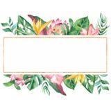 Akwarela sztandar z tropikalnymi liśćmi i kwiatami, akwareli plamy royalty ilustracja