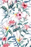 Akwarela tropikalny kwiecisty wzór, delikatna kwiat tapeta, Zdjęcie Stock