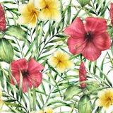 Akwarela tropikalny wzór z plumeria i hibiskus Ręka malujący kwiaty z palma liśćmi odizolowywającymi na bielu ilustracji