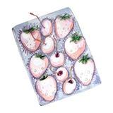 Akwarela ustawiająca jagody w pudełku dla walentynka dnia ilustracji