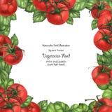 Akwarela weganinu kwadratowa rama świeżość pomidorem i basilem ilustracji