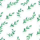 Akwarela wektorowy bezszwowy wzór z zielonymi liśćmi Obraz Royalty Free